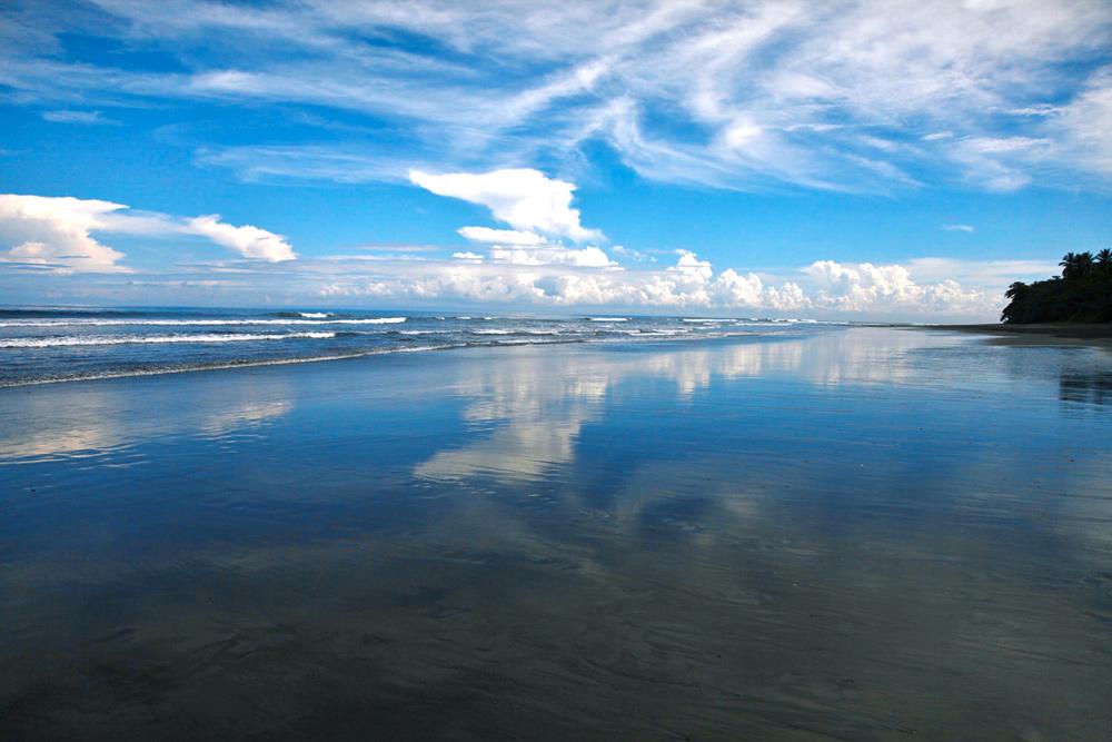 Amazing 37,915 Sqm Beachfront Freehold Land In Jembrana Negara