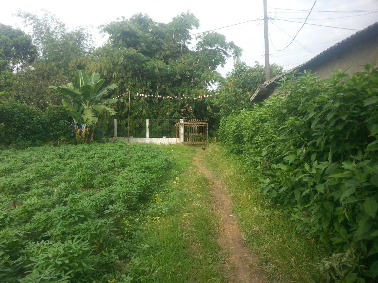 Dijual Tanah Lokasi Strategis di Dramaga Bogor