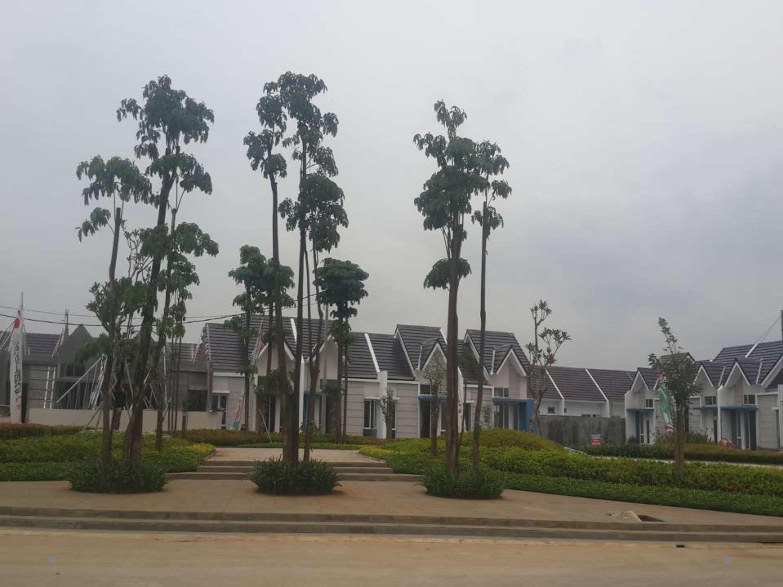 NEW Cluster LIVERPOOL @Mutiara Gading City