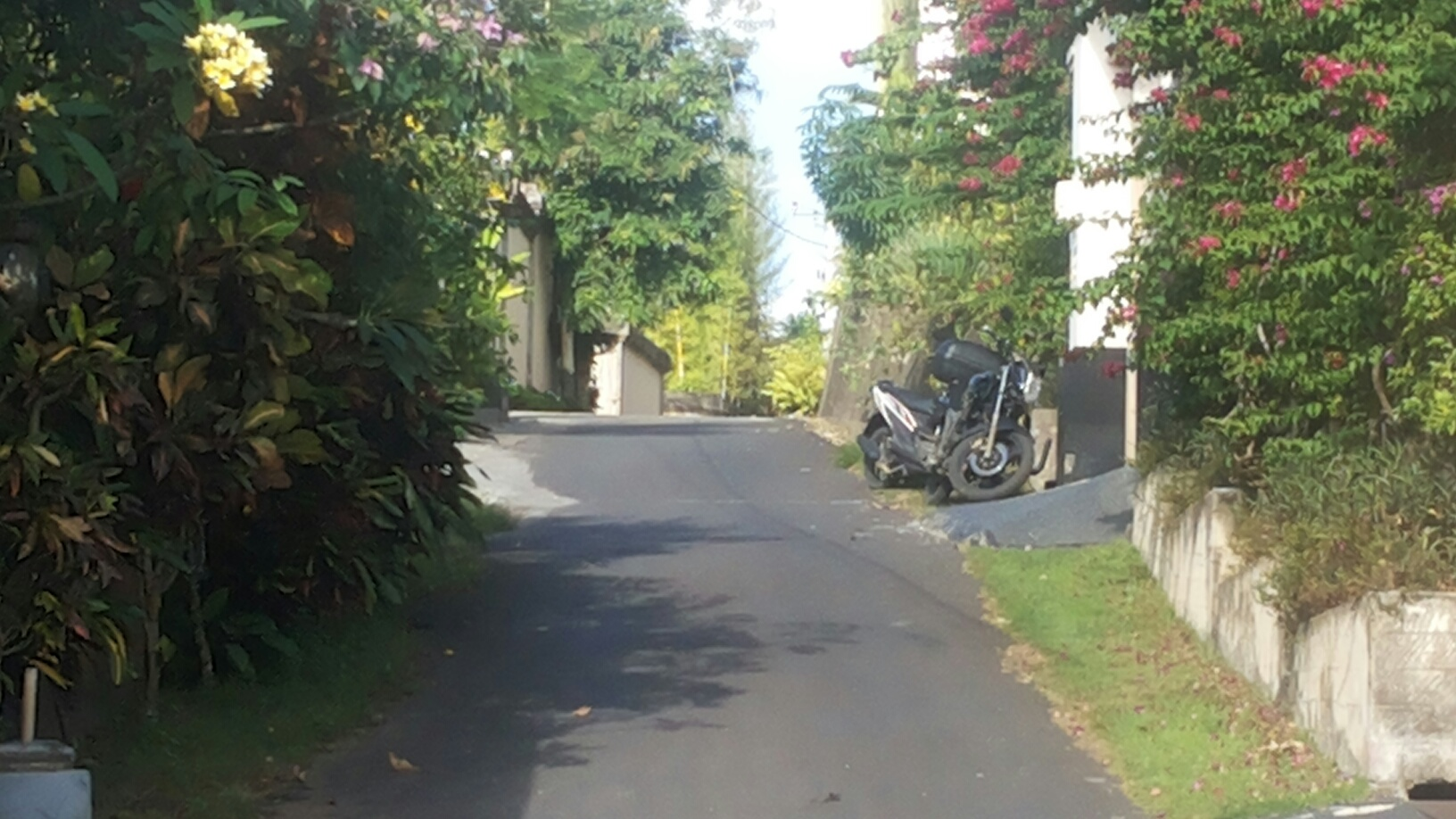 4,5 ARE FREEHOLD LAND IN PECATU NEXT TO PECATU GRAHA GREAT FOR VILLA OR HOME STAY