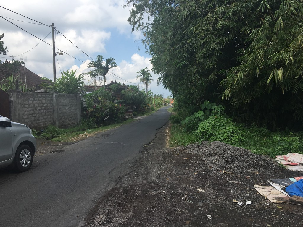 Land Freehold 5050 Sqm  In Tabanan