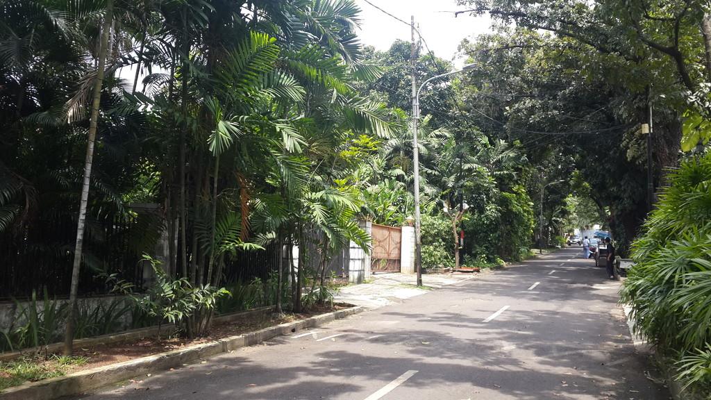 Rumah Dijual Premium Area Menteng Jl Situbondo