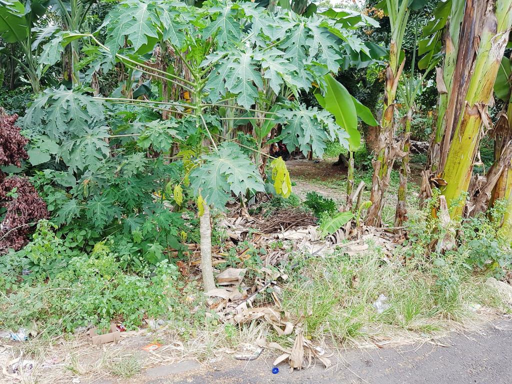 Dijual Kavling Di Jl Sukadamai, Ciputat