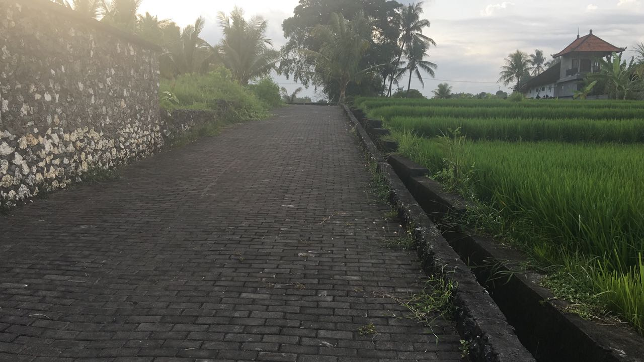 Land Freehold 3215 Sqm with River View and Rice Field View In Great Location Nyambu Kediri Tabanan