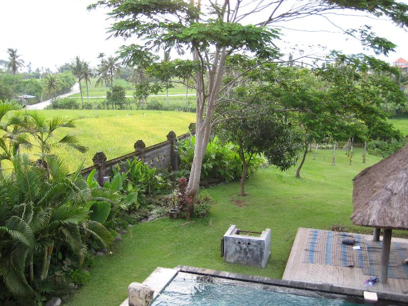 Freehold Villa In Great Location Canggu